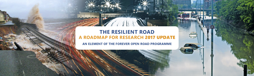 The Resilient Road